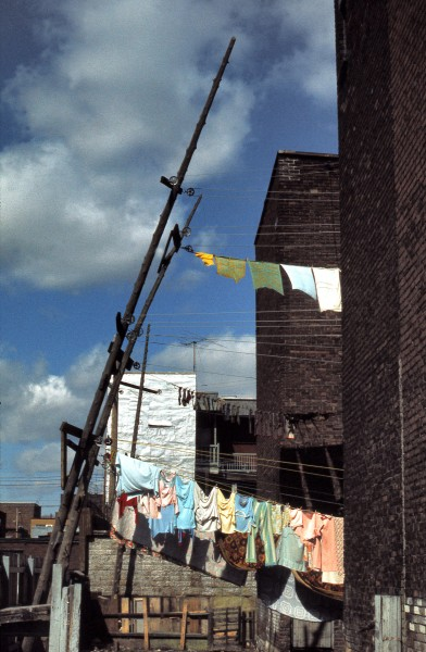 <b>Sheds, clotheslines and backyard, La Fontaine and Champlain Streets, 1974.</b> Photo: Daniel Heïkalo, Écomusée du fier monde