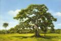 Desautels_L'arbre