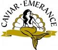 !logo2c_caviar